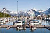 Valdez, Alaska, U S A