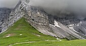 Eng Valley, Karwendel mountain range, Austria  The vertical rock faces of the Laliderer Waende during cloudy weather  The Eng valley is the most famous of all valleys in karwendel mountain range  Next to the sheer rock faces of the karwendel mountains the