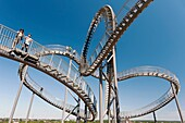 Turtle and Tiger pedestrian roller coaster sculpture on Magic Mountain in Duisburg Germany