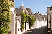 A street of trulli houses, Rione Monti, Alberobello, province of Bari, in the Puglia region, Italy