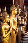 Thailand, Ayutthaya, Wat Yai Chaya Mongkol Temple, golden Buddha statues