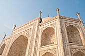 Detail with alcove and floral pattern of precious stones, Taj Mahal, Agra, India