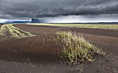 Skeidararsandur outwash plains covered with new ash from Grimsvotn volcanic eruption, Iceland  Eruption began on May 21, 2011 spewing tons of ash