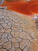 Cracked Geothermal Pool Bed, Iceland