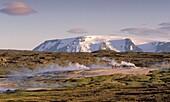 Geyser with steam Geothermal Hot Spring area Hveravellir, Central Highlands Iceland