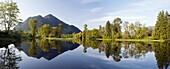 Seabird Island Landscape Composite Panoramic Image, near Agassiz, British Columbia, Canada