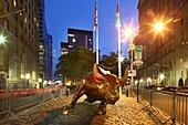 Wall Street Bull, NYC
