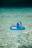 Float Toy in Swimming Pool