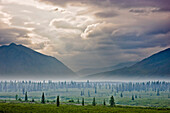 Atmospheric scenic of Broad Pass and boreal forest with smoke from wildfires settling in valley, Southcentral Alaska