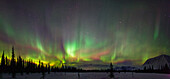 View of Northern Lights and spruce trees in Broad Pass, Southcentral Alaska, Winter