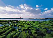 Jeju Island, Shinyang