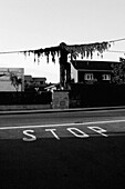 Stop on Residential Road