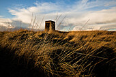 Tall Grasses and Lone Stone Structure
