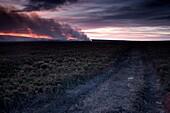 Yorkshire, England, Field Of Burning Heather