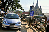 Car with the cow in the stree of Nyaungshwe, Nyaungshwe , Inle Lake, Myanmar, Burma, Asia