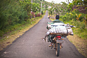 Fisherman transporting fish on a motorcycle, Madagascar, Africa