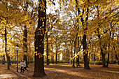 Two joggers running in Brunswick park through autumn leaves, Brunswick, Lower Saxony, Germany