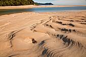 blocked for illustrated books in Germany, Austria, Switzerland: Sandbank, with ripples in golden sand, Awaroa Inlet, Abel Tasman Coastal Track, Great Walks, north-west of South Island, Abel Tasman National Park, South Island, New Zealand