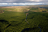 blocked for illustrated books in Germany, Austria, Switzerland: Aerial of pine timber plantations, Kaingaroa Forest Plantage, Monoculture between the coast and Lake Taupo, Bay of Plenty, North Island, New Zealand