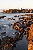 Rocky coastline at Whanarua Bay at sunset, East Cape, North Island, New Zealand