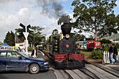 Steam locomotive at a level crossing, tourist attraction, Kawakawa, North Island, New Zealand
