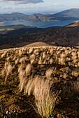 Volcanic terrain, Lake Rotoaira in the background, Tongariro Alpine Crossing, Great Walk, Tongariro National Park, World Heritage, North Island, New Zealand
