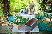 Table with flowerpot for geranium, garden in summer, Vienna, Austria