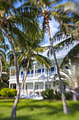 Moorings Village Resort with wooden villa BLUE CHARLOTTE in the background, Islamorada, Florida Keys, Florida, USA