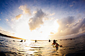 Hawaii, Surfers float on surfboards at sunset. FOR EDITORIAL USE ONLY.