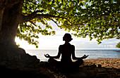 Hawaii, Kauai, Woman doing yoga on beach under tree.