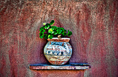 New Mexican Wall Sconces, New Mexico, Rustic detail of potted plant against adobe wall.