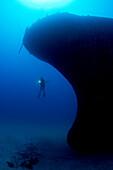 Hawaii, Oahu, Waikiki, Diver exploring Sea Tiger ship wreck.