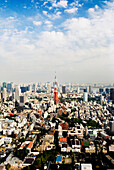 Japan, Tokyo, Tower and city view from top of Mori Tower.