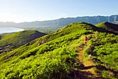 Hawaii, Oahu, Woman hiking on ridge above Lanikai.