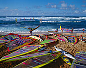 Hawaii, Maui, Hookipa Beach Park, world reknown for windsurfing, many colorful sails on beach athletes and spectators