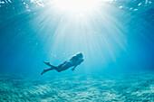 Hawaii, Maui, Makena, Young woman enjoys a swim in the ocean.