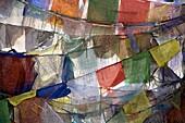 'Rows Of Prayer Flags, Chemray Village, Leh, Ladakh, Jammu And Kashmir, India'