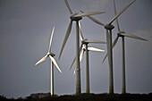 France, Brittany, Wind turbine, wind farm
