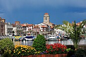 France, Pyrenees-Atlantiques (64), St. Jean de Luz, famous seaside resort of the Basque coast, to the old port, flowers in the foreground