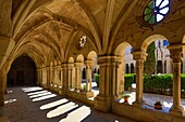 Spain , Catalonia, Royal Monastery of Vallbona, The Cloister