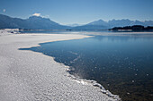 Lake Forggensee with view to the Allgaeu Alps with Saeuling and Tannheimer Berge, Allgaeu, Bavaria, Germany