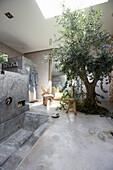 Olivenbaum und Betonwanne im Badezimmer, Hotel Areias do Seixo, Povoa de Penafirme, A-dos-Cunhados, Costa de Prata, Portugal