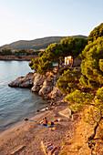 Beach in the sunset light, near Portals Nous, west of Palma, Mallorca, Balearic Islands, Spain