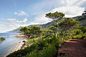 Coastal trail near Port des Canonge, Platja de Son Bunyola, west of Valldemossa, Tramuntana mountains, Mallorca, Balearic Islands, Spain