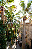 Courtyard with palm trees, Finca Raims, rebuilt vineyard and country hotel, Algaida, Mallorca, Balearic Islands, Spain