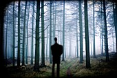 silueta de hombre en el bosque, inspiración, man silhouette in the forest, inspiration