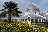 The Palm House at the Botanic Gardens  Belfast city  County Antrim  Ulster  Northern Ireland  United Kingdom.