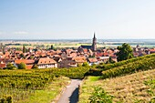 Alsace, architecture, Bas-Rhin, blue, building, church, city, cityscape, color image, copy space, Dambach-La-Ville, day, dwelling, Europe, France, horizontal, house, outdoors, Saint Etienne, sky, town, village, V04-1818565, AGEFOTOSTOCK