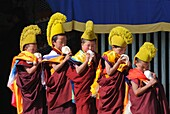 China, Qinghai, Amdo, Tongren Rebkong, Monastery of Gomar Guomari Si, Losar New Year festival, Opening ceremony, Young novices blowing conch shells