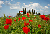 Tuscan country house and cypresses above a poppy field, Val d'Orcia, Orcia valley, UNESCO World Heritage Site, near Pienza, province of Siena, Tuscany, Italy, Europe